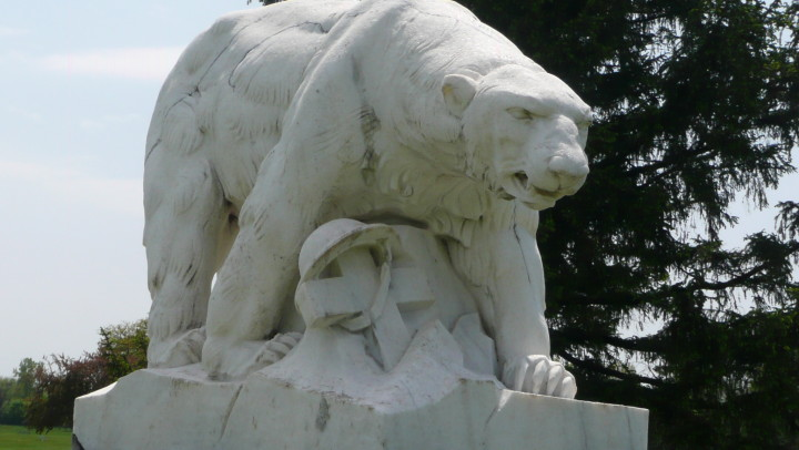 The WWI Detroit Polar Bears